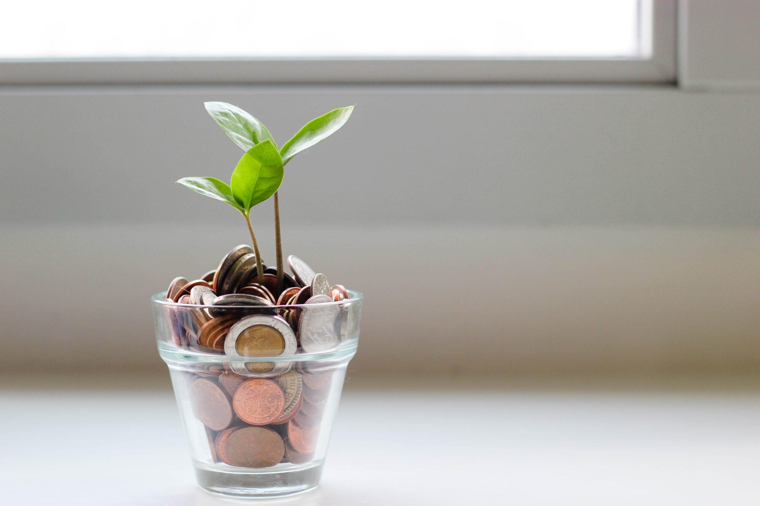 Pengamaskinen genererar avkastning som man kan leva på.